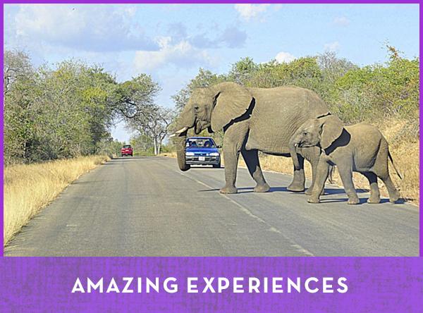 Amazing Experiences