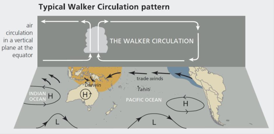 Typical Walker Circulation Pattern Weather