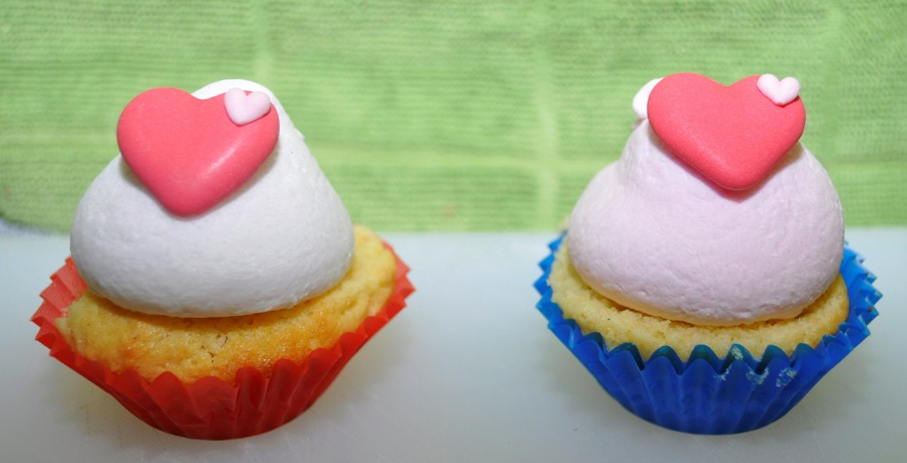 Mini Cupcakes with Pretty icing