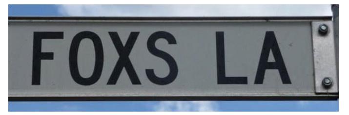 Foxs Lane Blog