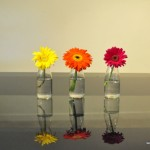 glass juice bottle vases
