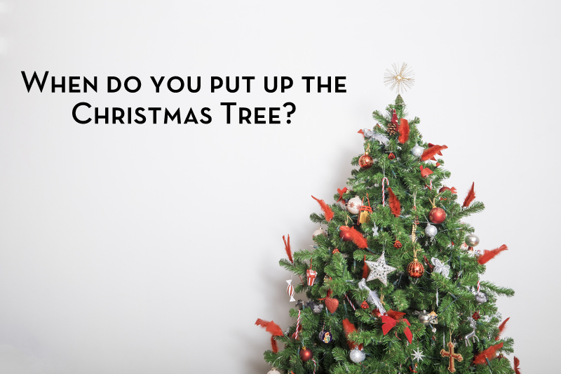 when do you put up the christmas tree