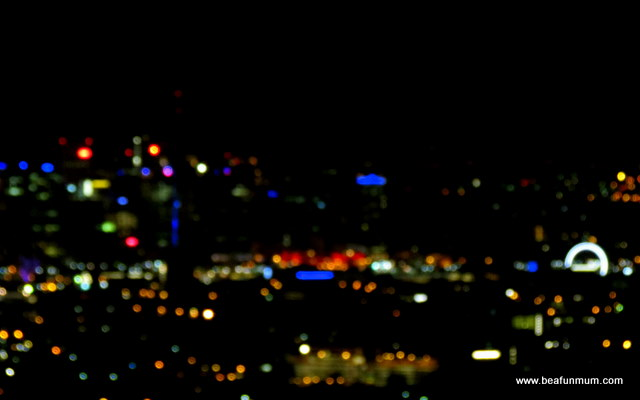 Brisbane City View -- Mt Cootha