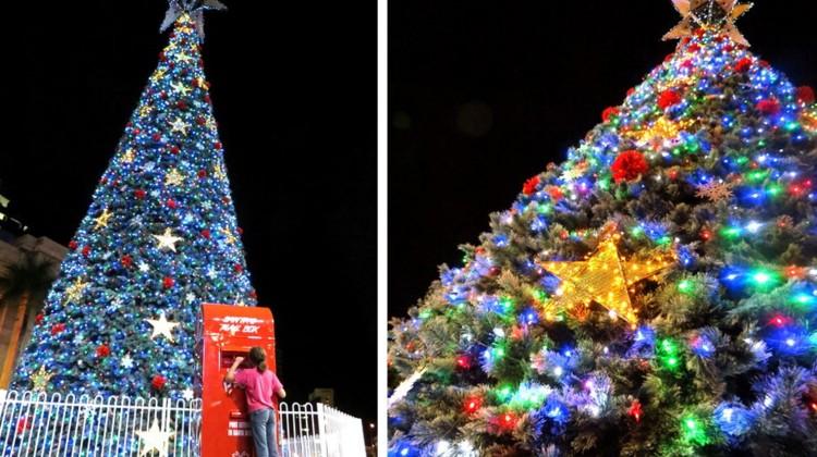 george square christmas tree brisbane