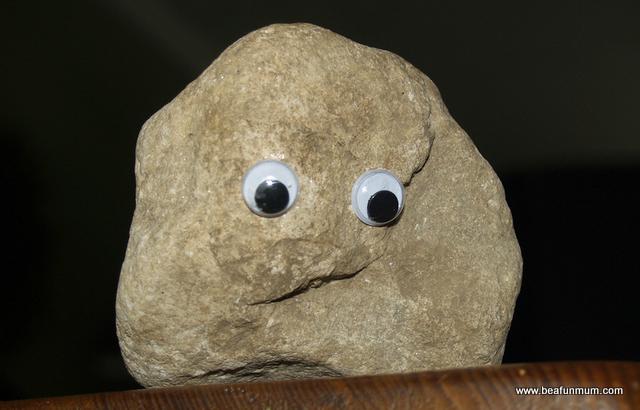 I Adore Pet Rocks Be A Fun Mum