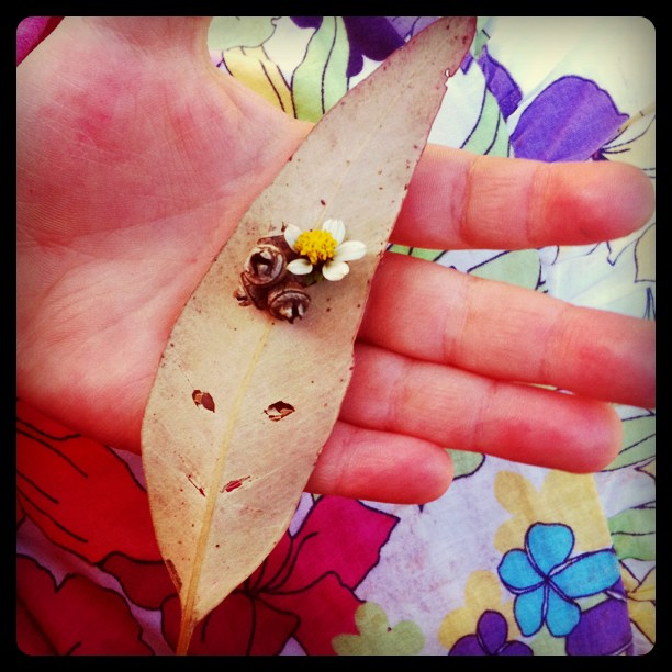 nature crafts -- leaf face