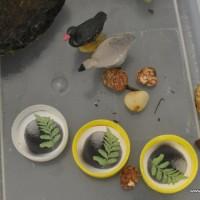 imaginative play scene: rocks