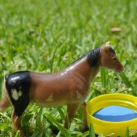 milk bottle lid craft: animial water trough