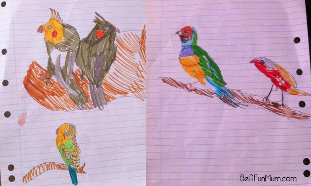 birds drawing