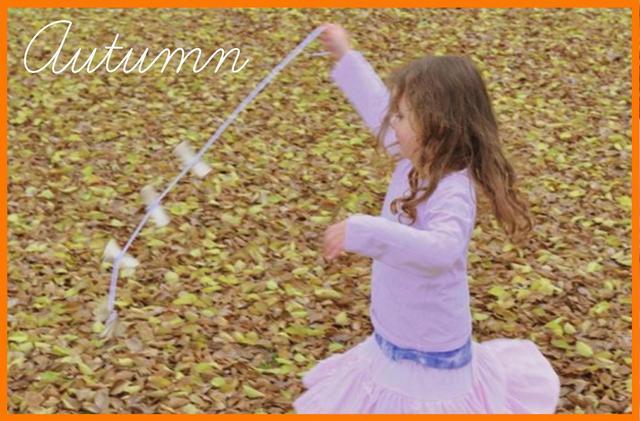 seasonal craft -- autumn
