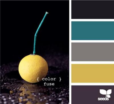 design seeds black blue and yellow