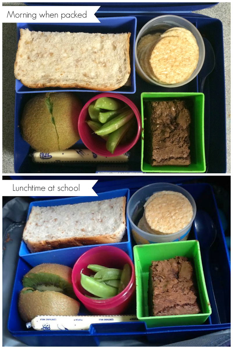 bento laptop lunch boxes - how they keep food