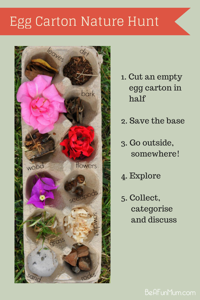 Use an empty Egg Carton as a sorting tray for a Nature Hunt