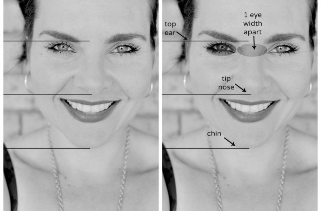 Drawing: anatomy of the face (in rough thirds)