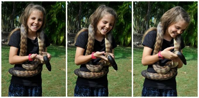 Snakes Downunder