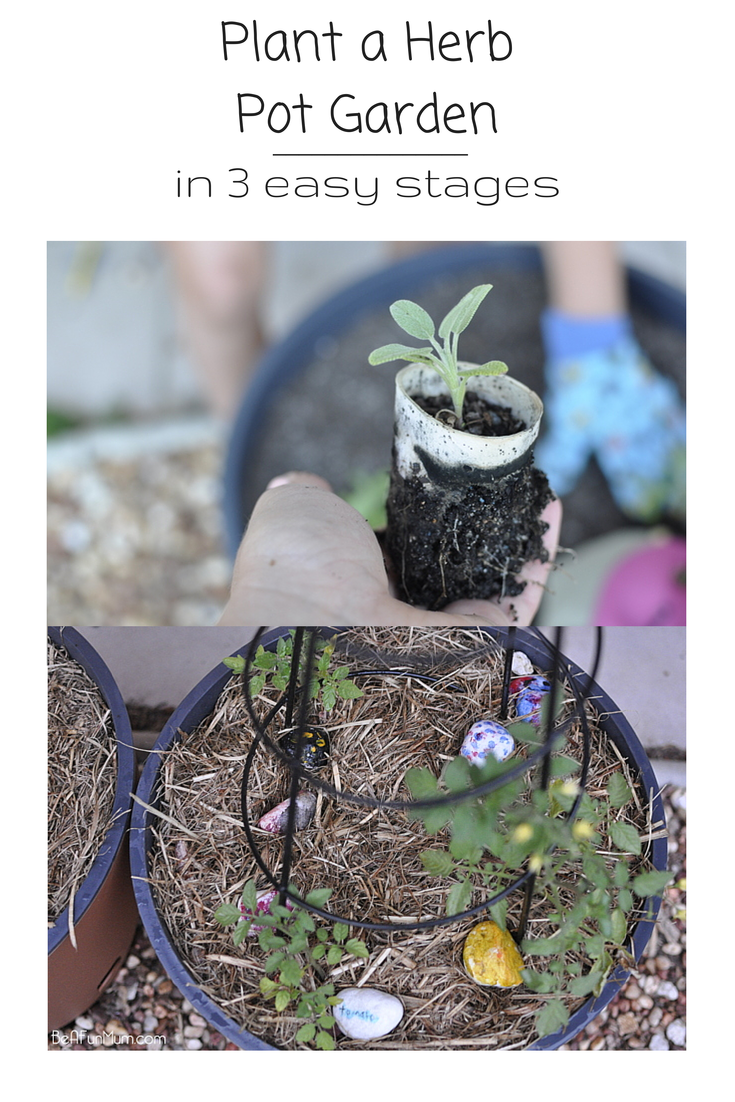 how to plant a herb garden in pots
