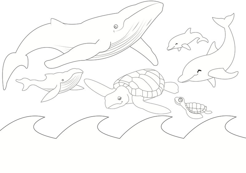 Sea Animal Colouring Page