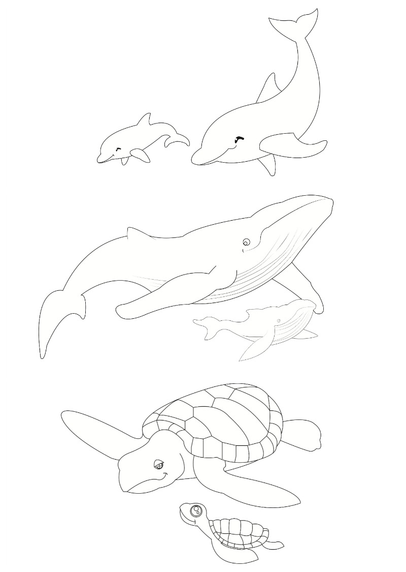 Whale / Dolphin / Turtle colouring pages