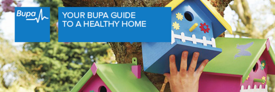 Allergy Friendly Home Guide