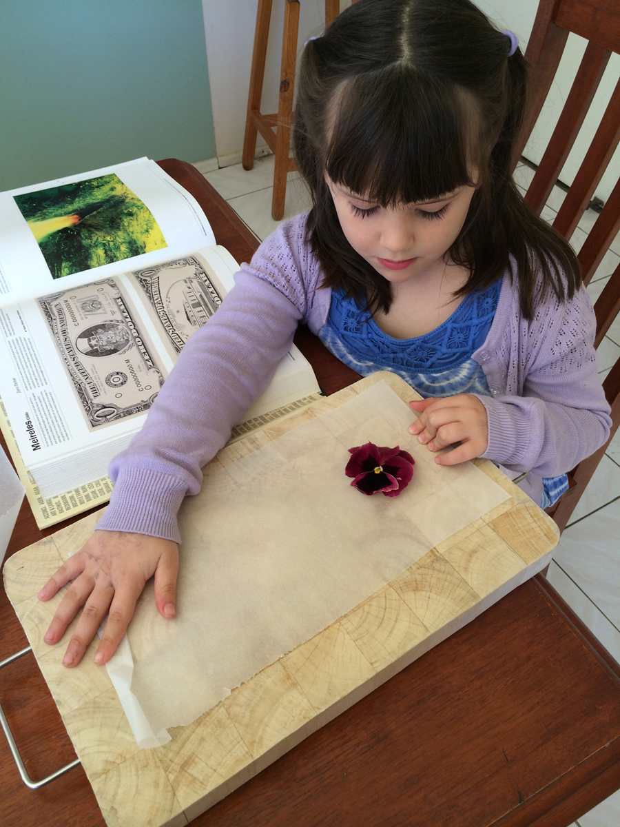 How to press flowers  - Book pressed flowers free craft from the garden be a fun mum