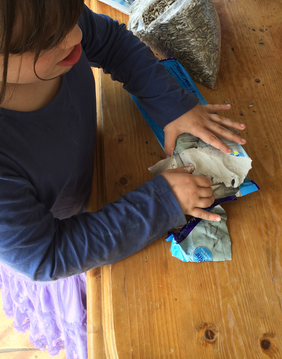 Sunflower seed bombs use airdry clay