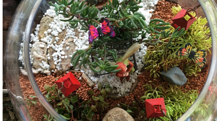 Miniature Terrarium Fairy Garden with wheelbarrow