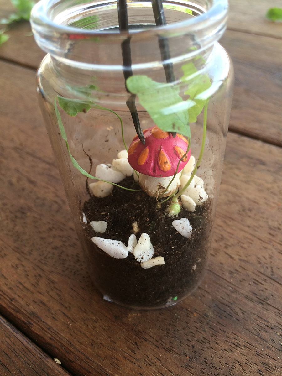 Easter Miniature Terrarium Sugar Free Nature Gift using sweezers to put mushroom in