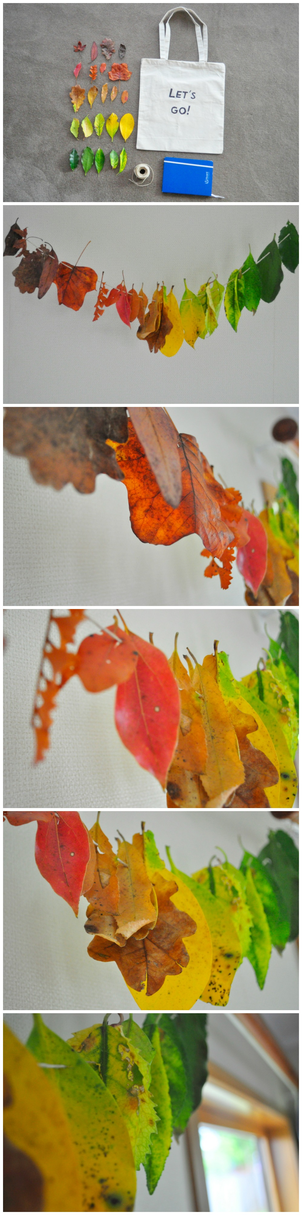 Rainbow Leaves for Autumn