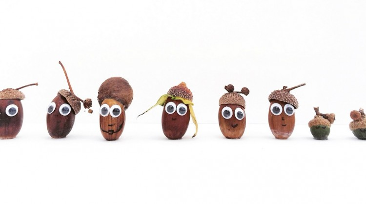 Adorable Acorn People