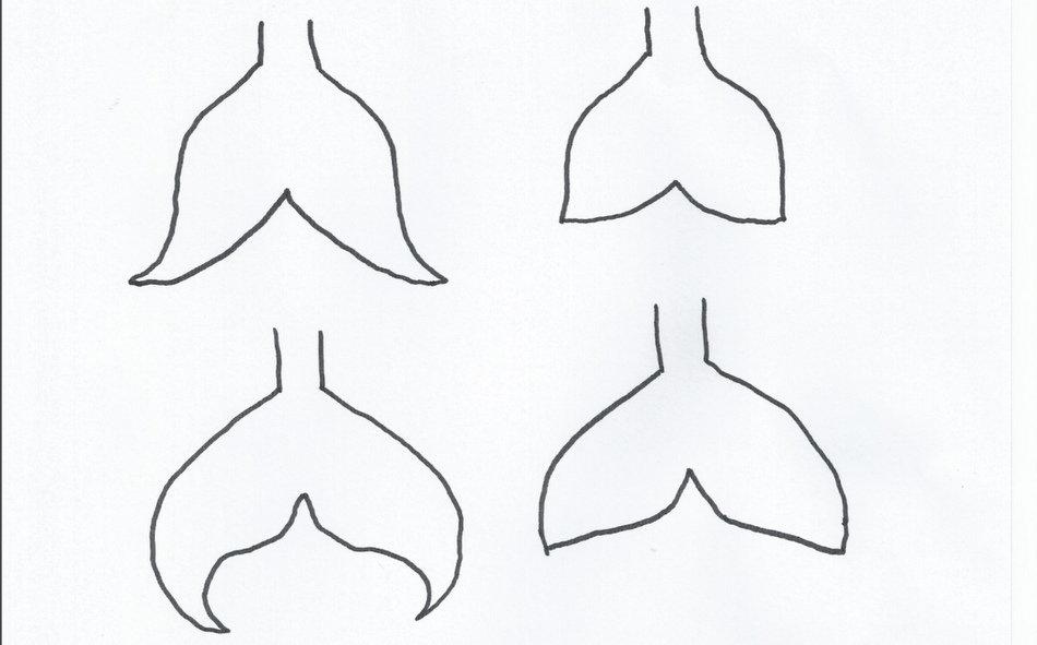 Mermaid tail template