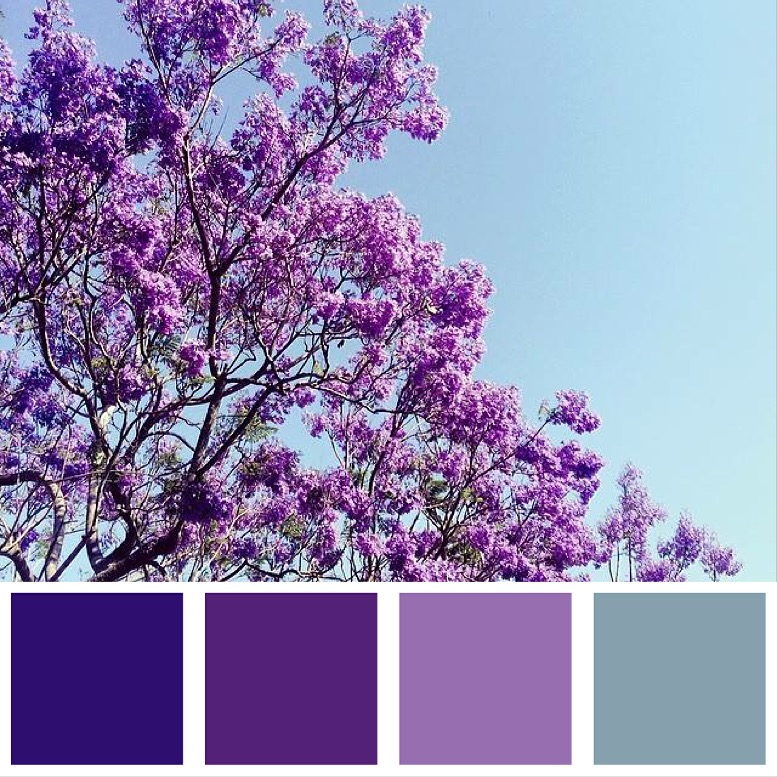 Purple Rain Colour Palette