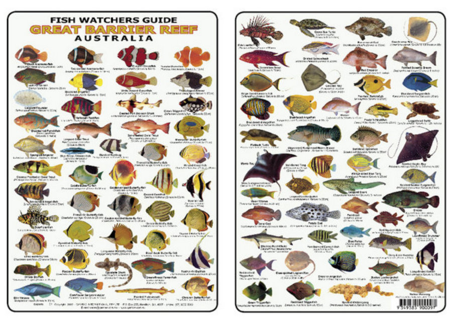 Great Barrier Reef fish Watchers Guide