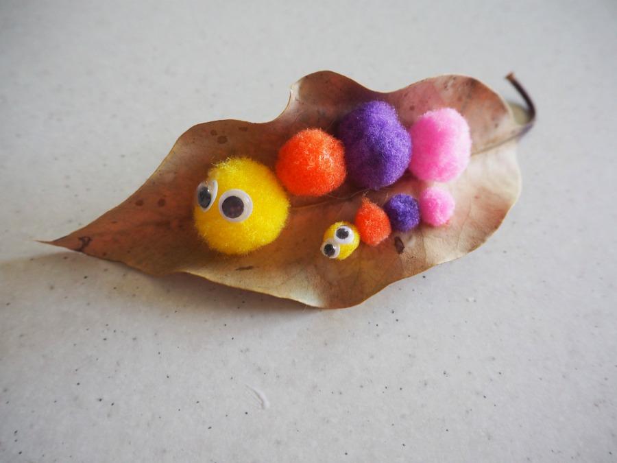 pom pom caterpillar