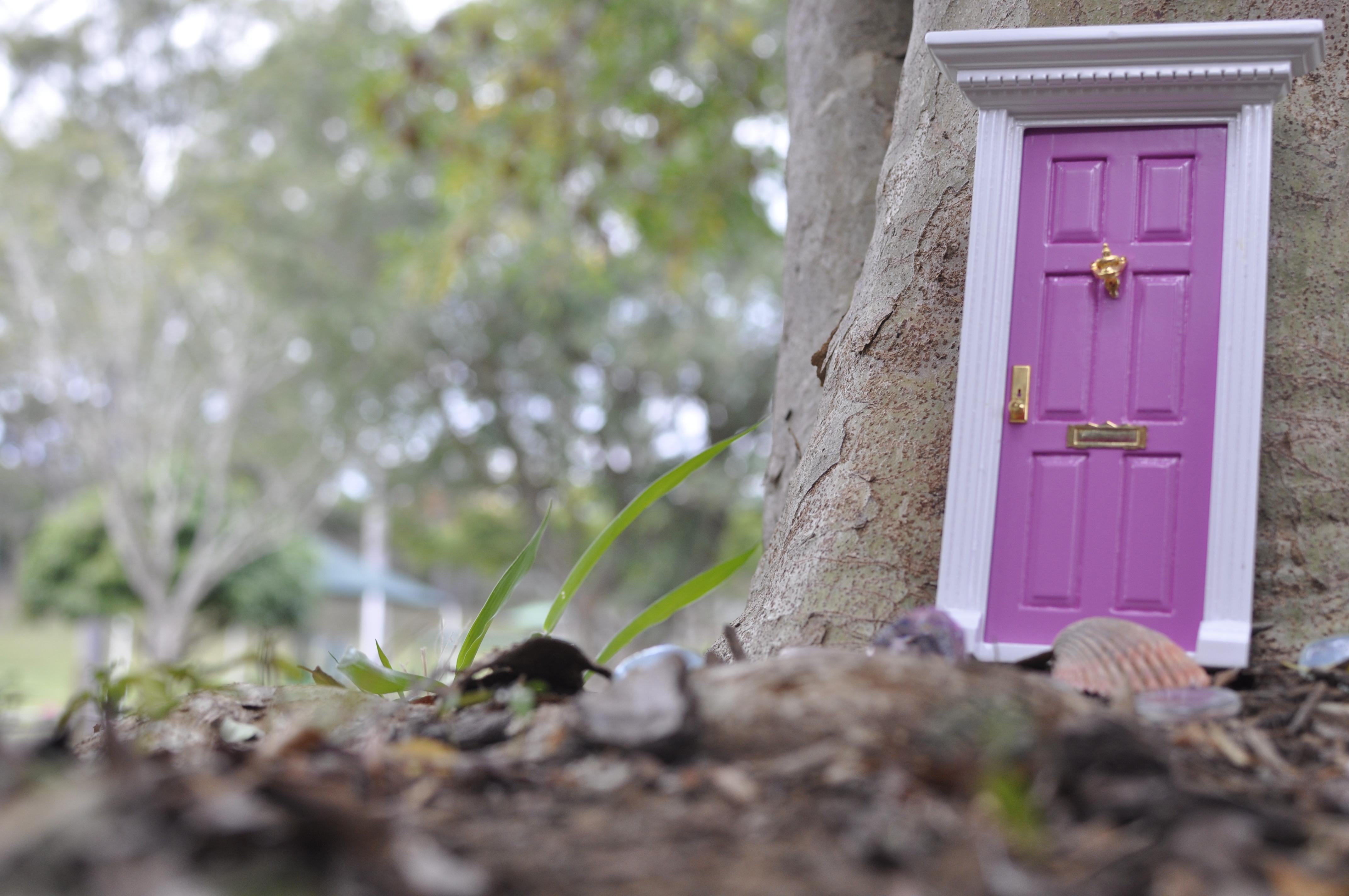 Fairy tree door kiddies pinterest for Fairy doors for trees