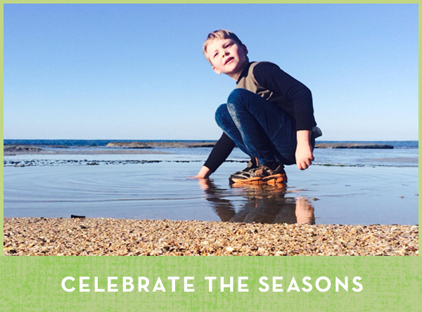 Celebrate the seasons - craft and activities for kids