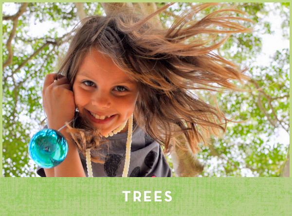 Activities with Trees for Kids - Be A Fun Mum