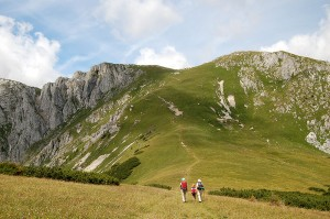 activities for children 8 - 12 years: hiking