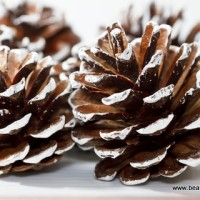 how to paint a pine cone