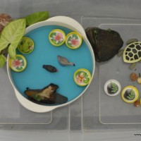 imaginative play scene: pond