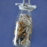 Shells in hanging vase