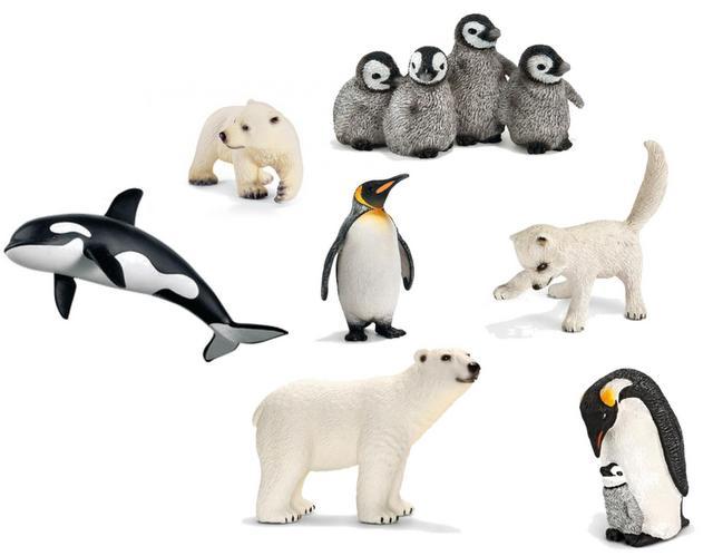 arctic animials