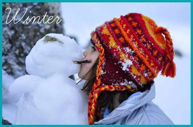 seasonal craft -- winter