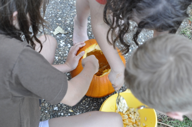 how to carve a pumpkin -- cleaning it out