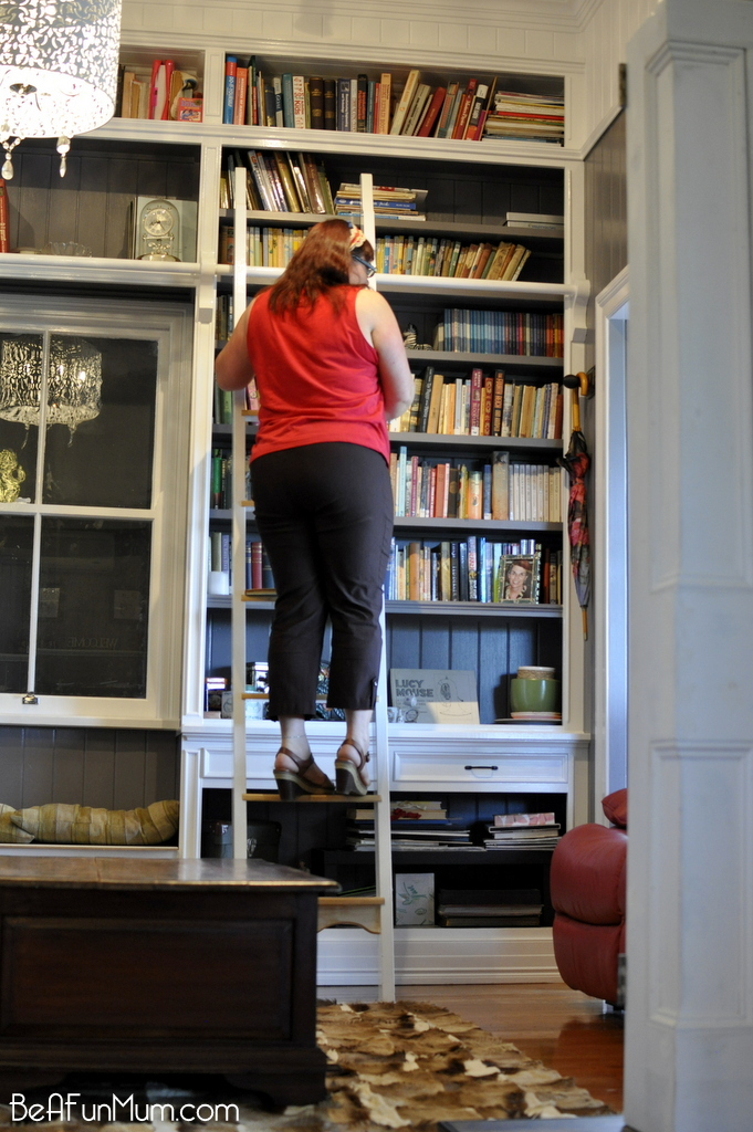 amazing wall bookcase -- with ladder