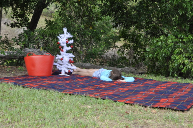 outdoor christmas ideas - picnic mat and a small tree - beafunmum.com
