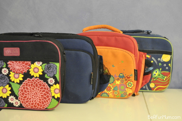 insulated case - laptop lunch box - bento