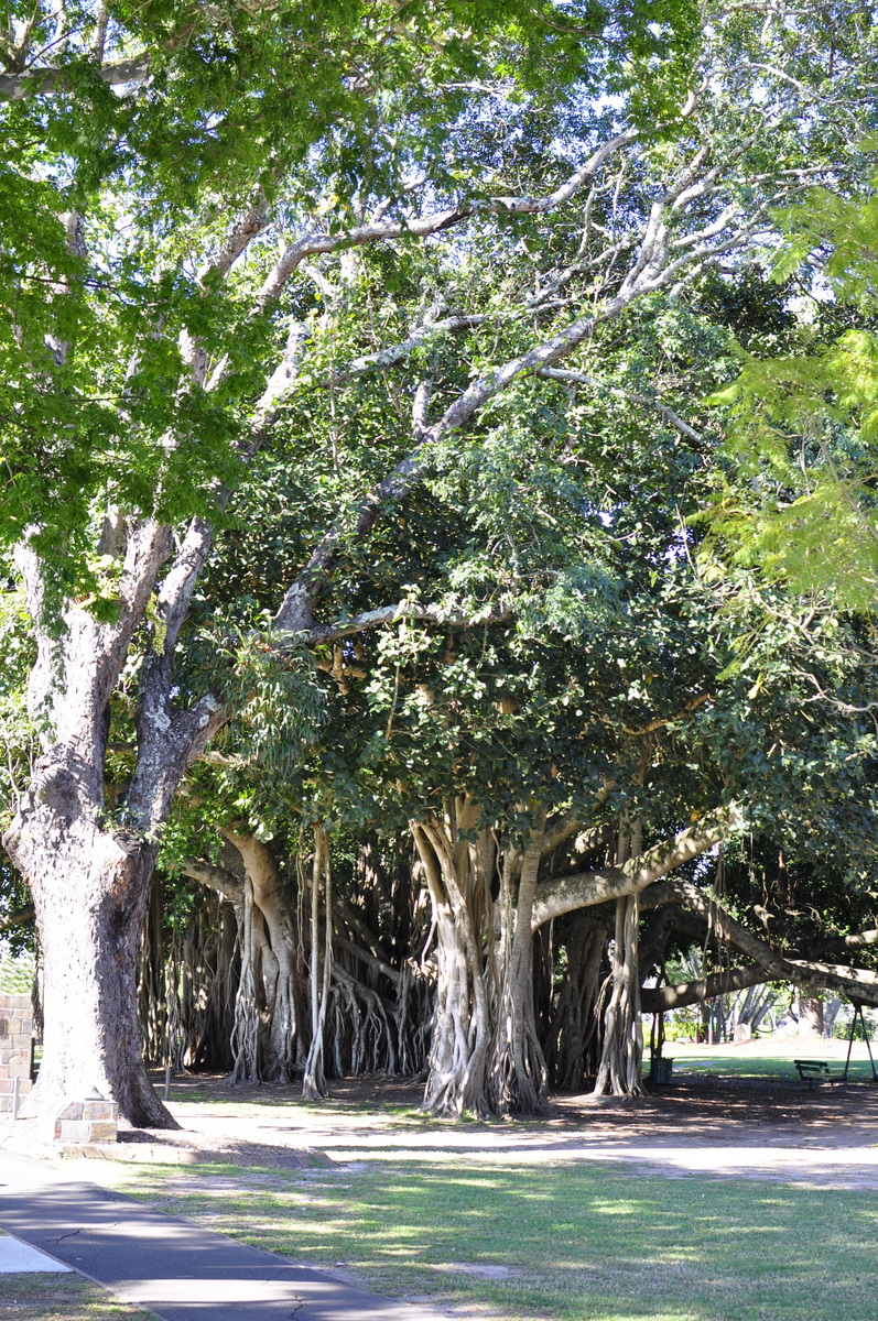 Queens Park - Maryborough - Fraser Coast - Queensland