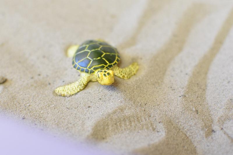 play figurines - turtle