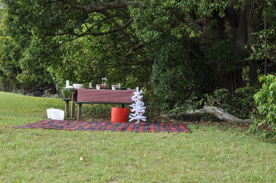 Outdoor Christmas Ideas