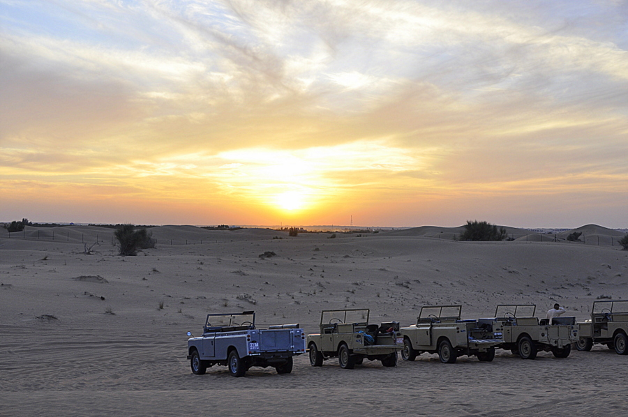 Dubai Safari